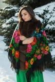 De Russische schoonheid denkt in het de winterbos stock afbeeldingen