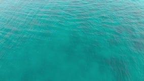 De rust van de zomerkeerkringen, verbazend satellietbeeld van turkoois oceaanwater stock videobeelden