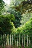 De rustieke houten omheining verhindert toegang verder tot het bos Royalty-vrije Stock Foto's