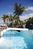 De rustige hemel van de pool en van de palm whith Stock Afbeeldingen