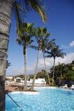 De rustige hemel van de pool en van de palm whith Royalty-vrije Stock Foto's