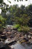 De rustige scène van de wildernisrivier stock foto