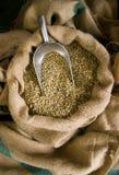 De ruwe Bonen van de Koffie Stock Afbeelding