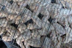 De ruwe kip kookt op het traliewerk Royalty-vrije Stock Foto