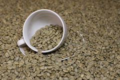 De ruwe koffie van de behoefte Stock Foto's
