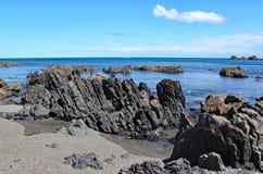 De ruwe kustlijn in Moa Point dichtbij Wellington Airport royalty-vrije stock foto
