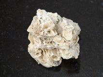 de ruwe steen van het coquinakalksteen op dark Royalty-vrije Stock Afbeelding