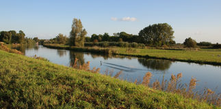 de rzeka Linge Obraz Stock