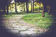 De S-curve van de gangweg in openbaar park met de gevallen achtergrond van de bladeren mooie aard stock afbeelding