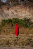 De safari Tanzania van Maasaimensen Royalty-vrije Stock Foto