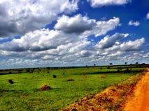 De Safari van Afrika stock afbeeldingen