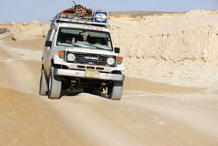 De safari van de Sahara Stock Foto