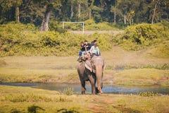 De Safari van de olifantswildernis bij het nationale park Nepal van Chitwan stock foto's
