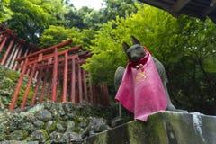 De saga, Japan - Mei 1, 2019 - Torii (Japanse rode houten poort) van het Heiligdom van Yutoku Inari is het derde - grootst van Ja stock afbeelding