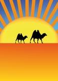 De Sahara vector illustratie