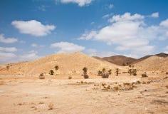 De Sahara Royalty-vrije Stock Afbeelding
