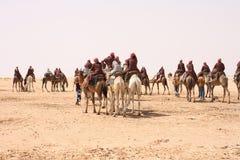De Sahara Royalty-vrije Stock Fotografie