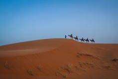 De Sahara, Kameelcaravan Royalty-vrije Stock Afbeeldingen