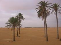 De Sahara - Tunesië royalty-vrije stock afbeelding