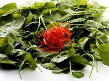 De salade doorbladert Royalty-vrije Stock Afbeelding