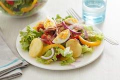 De salade nicoise Royalty-vrije Stock Afbeelding