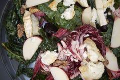 De salade van bietenbladeren met geitkaas royalty-vrije stock afbeeldingen