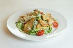 De Salade van Caesar met kip Stock Afbeeldingen