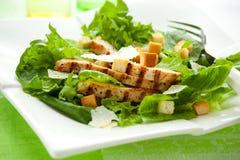De salade van Caesar van de kip Stock Foto's