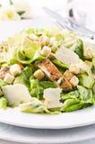 De Salade van Caeser Royalty-vrije Stock Foto's
