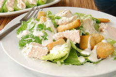 De Salade van Caeser met Kip stock fotografie