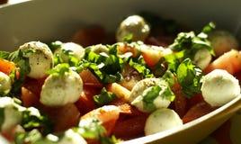 De salade van Caprese stock afbeelding