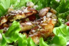 De salade van Cezar met kip en tomaten Royalty-vrije Stock Fotografie