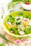 De salade van de aardappel met radijzen stock foto's