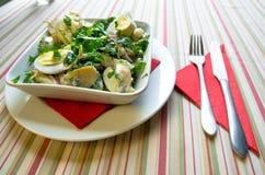 De Salade van de chef-kok Royalty-vrije Stock Afbeelding