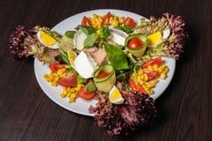 De Salade van de chef-kok met tonijn Stock Afbeeldingen