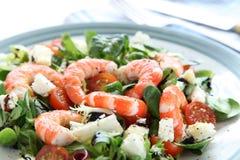 De Salade van de Garnaal van de koning stock foto