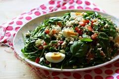 De salade van de gerst met groenten Stock Afbeelding