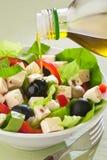 De salade van de kaas Stock Foto
