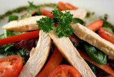 De Salade van de kip stock foto's