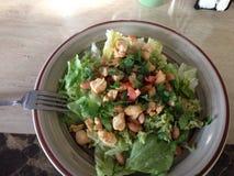 De salade van de kip Stock Fotografie
