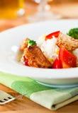 De salade van de kip en van de rijst met groenten Stock Afbeeldingen