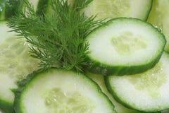 De salade van de komkommer Stock Foto's