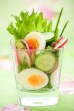 De salade van de komkommer, van de radijs en van het ei Stock Afbeelding