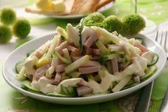 De salade van de lente. Royalty-vrije Stock Afbeeldingen