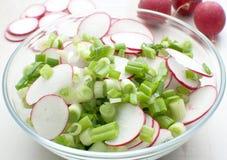 De salade van de lente met radijzen Royalty-vrije Stock Afbeeldingen