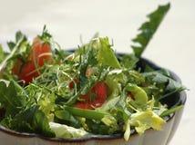 De salade van de lente met zeug-distel Royalty-vrije Stock Foto