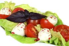 De salade van de mozarella Royalty-vrije Stock Foto's