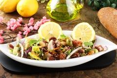 De salade van de octopus met groenten en bonen stock afbeelding