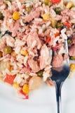 De salade van de rijst met tonijnvissen en groenten Royalty-vrije Stock Afbeelding