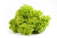 De salade van de sla op een wit Royalty-vrije Stock Afbeeldingen